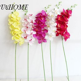 Wholesale Real Touch Flower Arrangement - Artificial silk orchid 9 head fake big flower with plastic stem for home arrangement wedding party supply real touch flore bulk