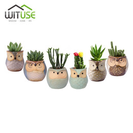 Wholesale Glazed Vases - Wituse 6x Cute Owl Face Ceramic Flower Pots Small Glazed Plant Pot For Succulents Planter Garden Home Decors Herb Vases