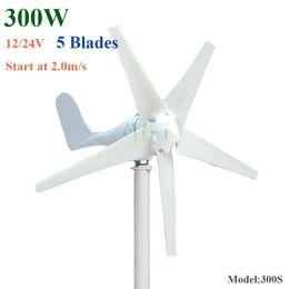 магнит 12 в Скидка Генератор 12V 24V ветротурбины генератора постоянного магнита AC 300W 3phase одновременный с 5 лезвиями горизонтальной ветрянки