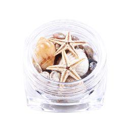 раковины оптом Скидка Wholesale Nails Art Natural DIY 3D Mini Conch Shells Starfish Sea Beach Ornaments Nail Rhinestones Decorations Tools