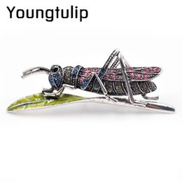 Wholesale Winter Coats For Women Sale - Young tulip New Vintage Grasshopper Brooches for Women Cute Insect Brooch Pin Hot Sale Winter Coat Accessories High Quality Gift