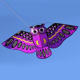 Canada Dessin animé hibou voler cerf-volant avec la ligne de cerf-volant facile voler cerf-volant avec 50 M ligne jouets pour enfants cadeau de plein air outil 43 x 20 pouce Colorfu Offre