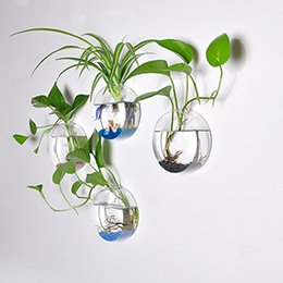 Wholesale Modern Air - Hanging Wall glass Terrarium Air Plant container Round Shape wedding christmas decoration