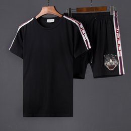 Wholesale High Waisted Cotton Pants - 3018 high quality male gorgon medusa T-shirt fashion short sleeve T-shirt jogging pants leisure sport suit clothing embroidery tiger cat