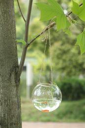 Wholesale Hanging Glass Balls Wholesale - 6pcs x Dia10cm Hanging Glass Ball Vase , Succulent Glass Terrairum , Fish Tank Hydroponic Vase Home Garden Party Flower