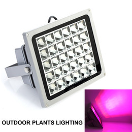 Wholesale Grow Lights Rgb - Full Spectrum 6W 20W 50W Waterproof LED Grow Light Outdoor Plants Lighting Highpower IR UV Led Lamp High brightness Flood Light AC85-265V