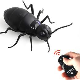Juguetes de insectos para niños online-Simulación divertida infrarrojo remoto RC Hormigas de control remoto por infrarrojos juguetes insectos Hormigas RC eléctrico juguete divertido niños regalos