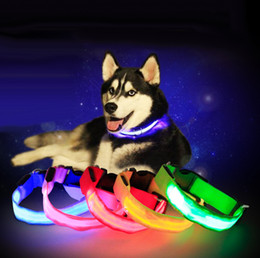 Wholesale cat teddies - Pet dog collar LED flash collars dog cat collars flashlights teddy large dog collars S M L Led pet supplies