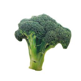 Fruta de veludo on-line-Últimas Hot idéias de produtos Kawaii Toys 3D Simulação vegetais Broccoli Pillow escritório Sofá almofada de veludo Frutas Legumes Plush