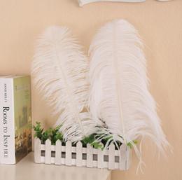 Canada En gros beaucoup 12-14 pouce 30-35cm belle plumes d'autruche pour pièce maîtresse de mariage table centres Party Decoraction approvisionnement FEA-001 Offre