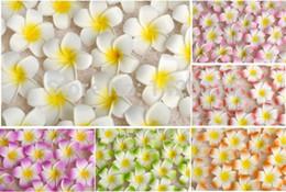 flor de espuma frangipani Rebajas 100 unids 7 cm Venta al por mayor Plumeria Hawaiian espuma Frangipani flor para el banquete de boda pinza de pelo ramo de flores decoración