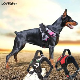 Wholesale Medium Harness - Hot luminous dog collar harness for dogs pets accessories harness dog necklace puppy breast-band for animals K9 pet chest collar