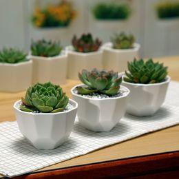 vendita calda 100 pz semplice bianco carnoso piccolo poligono ceramica cucitura bocca larga opaca vaso di fiori spedizione gratuita da grandi vasi da fiori in ceramica fornitori