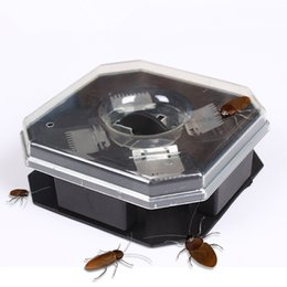 Wholesale high efficient - High Quality Safe Efficient Anti Cockroaches Trap Killer Plus Large Repeller No Pollute No Electric Pest Control IB676