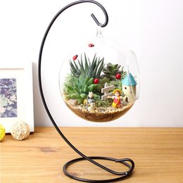 Wholesale Hanging Glass Plant Containers - DIY Hydroponic Plant Flower Hanging Glass Vase Container Home Garden Decor Brand New
