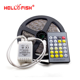 Wholesale Fishing Controller - Hello Fish 5m 300 LED 5050 LED Strip light DC 12V White & Warm White Double Color Tape + 24 Keys W & Warm Controller