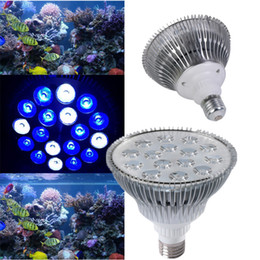 Wholesale Fish Grow Light - RAYWAY LED Aquarium Light E27 Par30 Par38 5W 7W 9W 12W 15W 18W AC85-265V Led grow Plant aquarium Lamp for coral reef fish tank