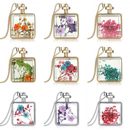 Wholesale vintage dried flowers - Women Jewelry Collares Dried Flowers Glass drifting bottle Necklace&Pendant Gold Vintage Long Chain Necklace Fine Jewelry 160477