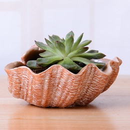 recipientes de bonsai Desconto Vaso de carne Originalidade Resina Shellshape Desktop Bonsai Recipiente Vasos de Flores Plantadores Vasos Suculentos Deor De Casa Venda Quente 10cy gg