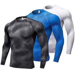 Nova Camisa de Manga Longa Esporte Homens Quick Dry Corrida dos homens T-shirt Cobra de Ginástica Roupas de Fitness Top Mens Rashgard Soccer Jersey de Fornecedores de camisas de manga longa de couro
