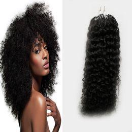 2019 enlace de micro bucle Micro Loop Extensiones de cabello 100s Mongolian Kinky Curly Natural Micro Link Extensiones de cabello Humano 100 g Curly Micro Loop Hair Extensions enlace de micro bucle baratos
