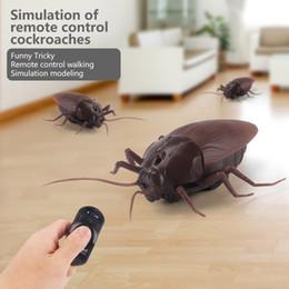 Argentina Alta simulación de cucarachas de animales de infrarrojos de control remoto para niños de regalo de juguete cheap remote control cockroach toy Suministro