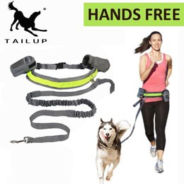 Wholesale Leash Accessories - [TAILUP]Pet Products For Large Dog Hands Free Leash Leads Dog-Collar Pet accessories Puppy Dog Harness Leash For Animals PY0024