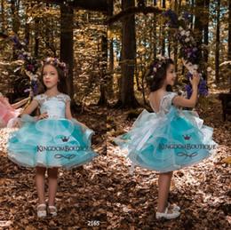 2019 vestidos de menina de flor de comprimento curto Luz Céu Azul Na Altura Do Joelho vestido de Baile Flor Meninas Vestidos Jóia Do Pescoço Rendas Cap Mangas V Voltar Curto Meninas Pageant Vestidos BA8262 desconto vestidos de menina de flor de comprimento curto