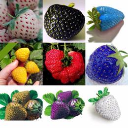 100 PCS/мешок цвет дождь с бантом семян плоды клубники многоцветных клубника семена цветочные семена сад горшки горшки от