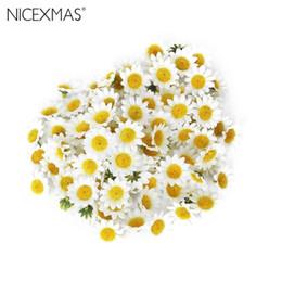 impianti aerei all'ingrosso Sconti 100pcs teste di fiori margherita artificiale per la festa nuziale fai da te (bianco)