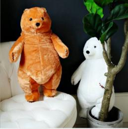 2019 большой белый медведь чучела животных 1 шт. 60 см Милый Постоянный Большой Белый Бурый Медведь Плюшевые игрушки Милый Ребенок Дети Обнять Животных Медведь Подушка Фаршированные Мягкие Куклы для Подарка На День Рождения скидка большой белый медведь чучела животных