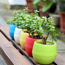 Wholesale Mini Garden Pots - Gardening Flower Pots Small Mini Colorful Plastic Nursery Flower Planter Pots Garden Deco Gardening Tool DHL Free Shipping 0703058