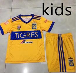 Wholesale Star Boy Shirt - Thai quality 17 18 Mexico club Tigres UANL kids kit soccer jersey 6 Stars 2017 GIGNAC Vargas H. Ayala SOSA football Shirt