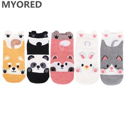 bear gift novelties Coupons - MYORED 5pairs cartoon female socks cotton socks slippers creative panda bear