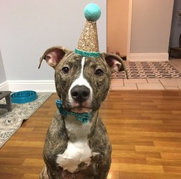 ties for dogs Promo Codes - Pet Party Hat Pet Crown & Bow Tie Dog Birthday Hat Party Outfit Puppies Headwear Accessories For Dog Cat Costume