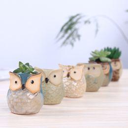 arte del fiore Sconti New Cute Fleshy Pottery Animal Owl Pollice Spessore Flower Pot Bacino Mini Glazed Office Decoration Ceramic Art