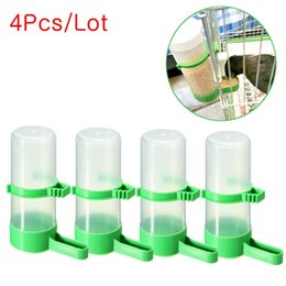 Wholesale Cage Feeders - 4 Pcs Lot Bird Feeder Pet Drinker Food Waterer Clip for Aviary Cage Budgie Lovebirds Cage Parrot Budgie Canary Drinker Food