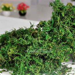 300 g / bolsa Mantener seco real verde musgo plantas decorativas florero artificial césped seda accesorios de flores para maceta decoración desde fabricantes