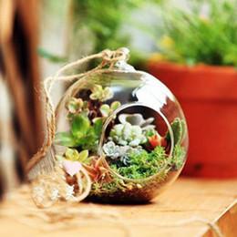 vasi bianchi blu nozze Sconti Forma del globo della sfera chiaro Vaso di vetro d'attaccatura Piante del fiore Vaso del terrario Contenitore Paesaggio Decorazione domestica di nozze di DIY