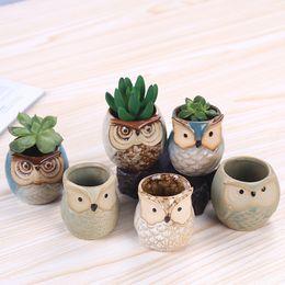 vasi di ceramica animale Sconti New Fleshy Pottery Animal Owl Pollice Spessore Flower Pot Bacino Mini Glazed Office Decoration Arte ceramica creativa