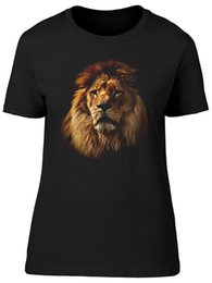 Hermoso gráfico online-Beautiful Lion Graphic, increíble camiseta de mujer - Imagen de Shutterstock