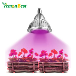 Wholesale Power Plant Hydroponic - LemonBest 5W Clip Hydroponic Plant Growing Lights 5 LEDs LED Grow Light Bulb with Power Switch for Garden Greenhouse AC 85~265V