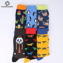 5ad49f296aa16 2019 macacos engraçado Modeager Marca Cactus Panda Macaco Padrão Hip hop  Meias Frescas para Homens Inverno