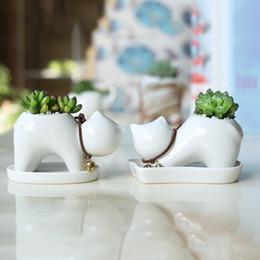 Olla de gato online-American Village Style Ceramics Fleshy Flowerpot Decoración del hogar Lovely Cartoon Cat Green Planting y plantas en macetas 6 8xn ff