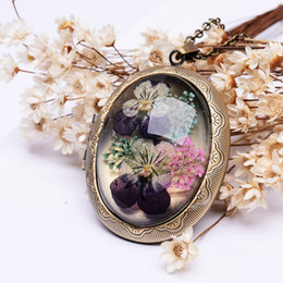Wholesale Long Glass Flowers - SEDmart Real Dried Pansy Flower Locket Pendant Necklaces Vintage Antique Bronze Plated Long Chain Glass Necklaces For Women Gift