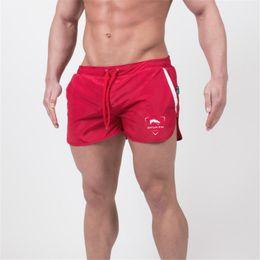 Hombre Gimnasio Gimnasio Sexy Cuerpo Sexy Cuerpo Online Online Hombre Spqwnd5BI