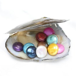 Wholesale Round Pearl Buttons - Button Pearl Oyster 10-16mm 20mix Colors fresh water shell natural Cultured Fresh Oyster Pearl Mussel Farm Supply Free Shipping wholesale