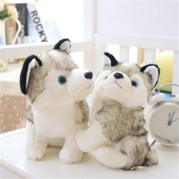 Wholesale cute huskies - Siberian Husky Toys Stuffed Plus Animals Plush Toy Cute Children Kid Gift Dog Doll Simulation Lovely Cartoon 24mr3 V