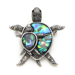 Wholesale turtle dress - 5PCS Natural Shell Turtle Brooches For Women And Men Alloy Couple Turtle Animal Brooch Pins For Suits Sweater Dress Hat Scarf Pins