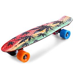 2019 mini bordo lungo Graffiti 22 pollici Acero Stampa Foglia d'acero Retro Skateboard Longboard Skate Board Mini Cruiser Long Board Skatecycle Per bambini mini bordo lungo economici